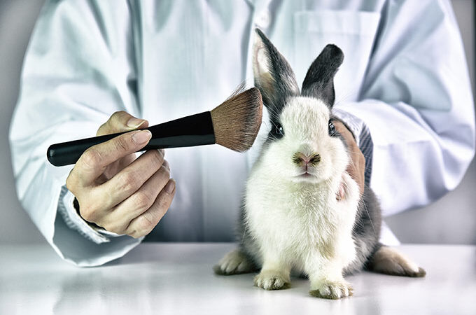 Fim de testes em animais tramita em urgência