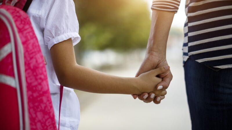 Ales: vítimas de violência doméstica terão prioridade em matrícula escolar